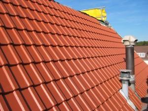 dakpannen Frans Golob